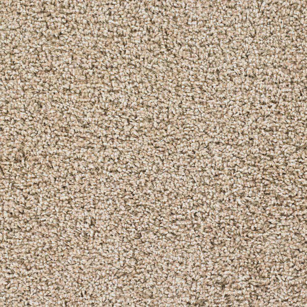TrafficMASTER Team Player - Color Cooperative Texture 12 ft. Carpet