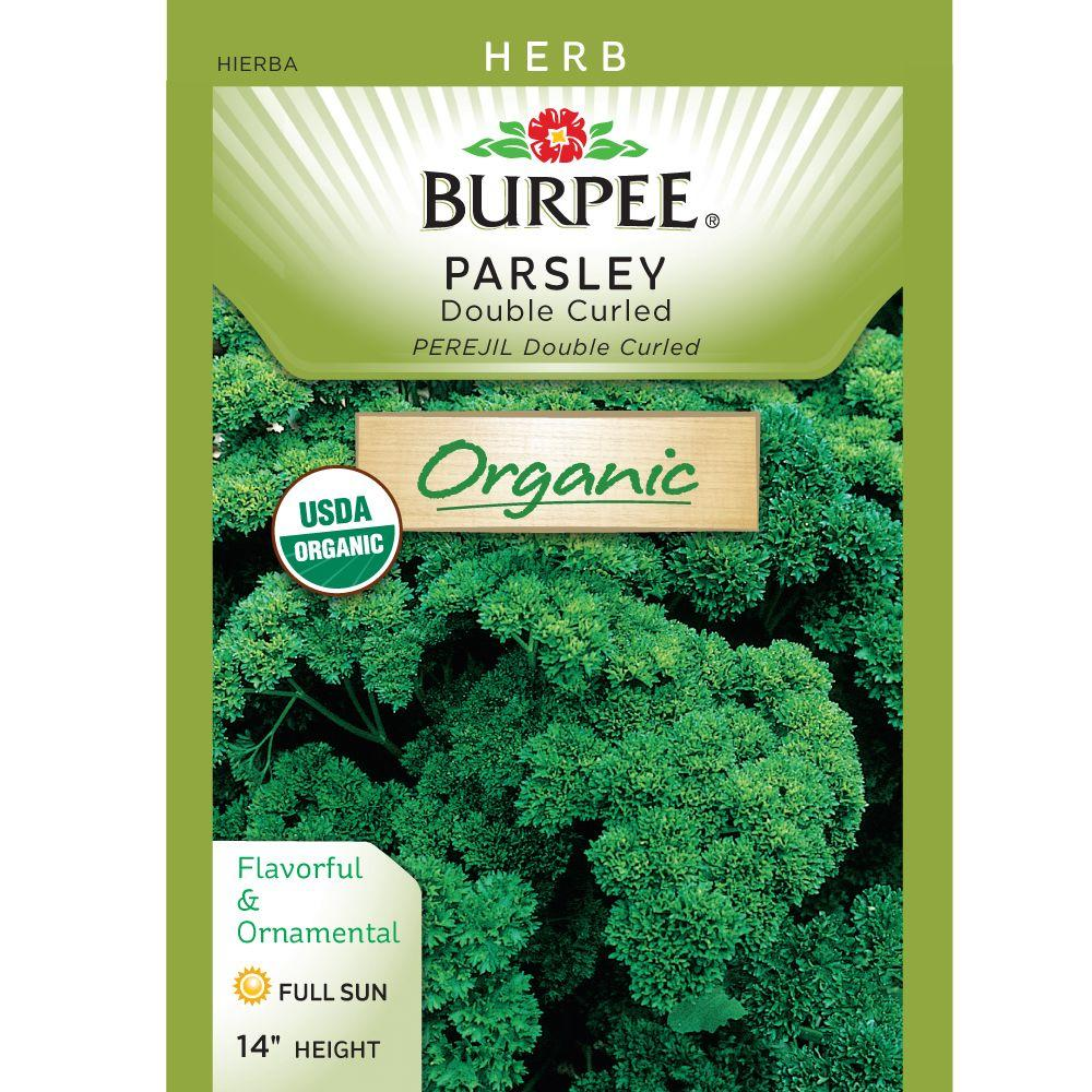 Burpee Organic Parsley Double Curled Seed-68716 - The Home Depot