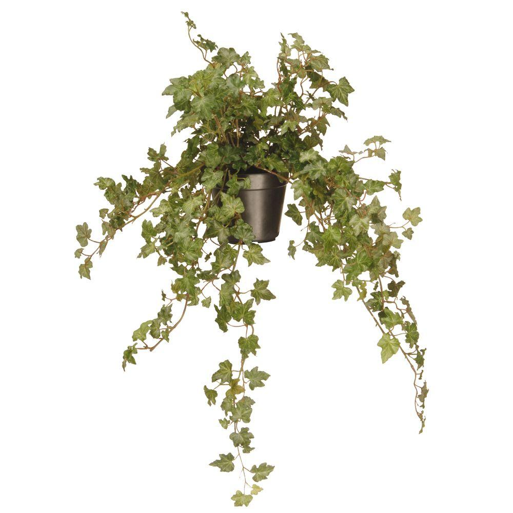 National Tree Company 12 in. Garden Accents Ivy Plant-GAIP30-12G - The