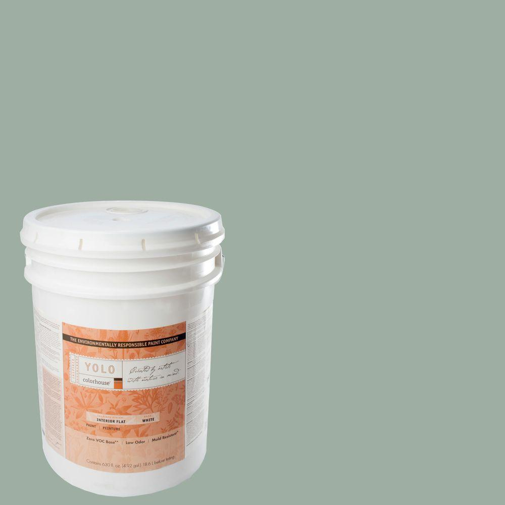 YOLO Colorhouse 5-gal. Water .06 Flat Interior Paint-DISCONTINUED