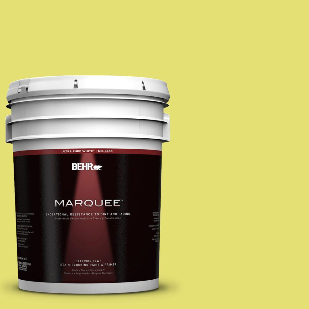 BEHR MARQUEE 5-gal. #400B-4 Citron Flat Exterior Paint