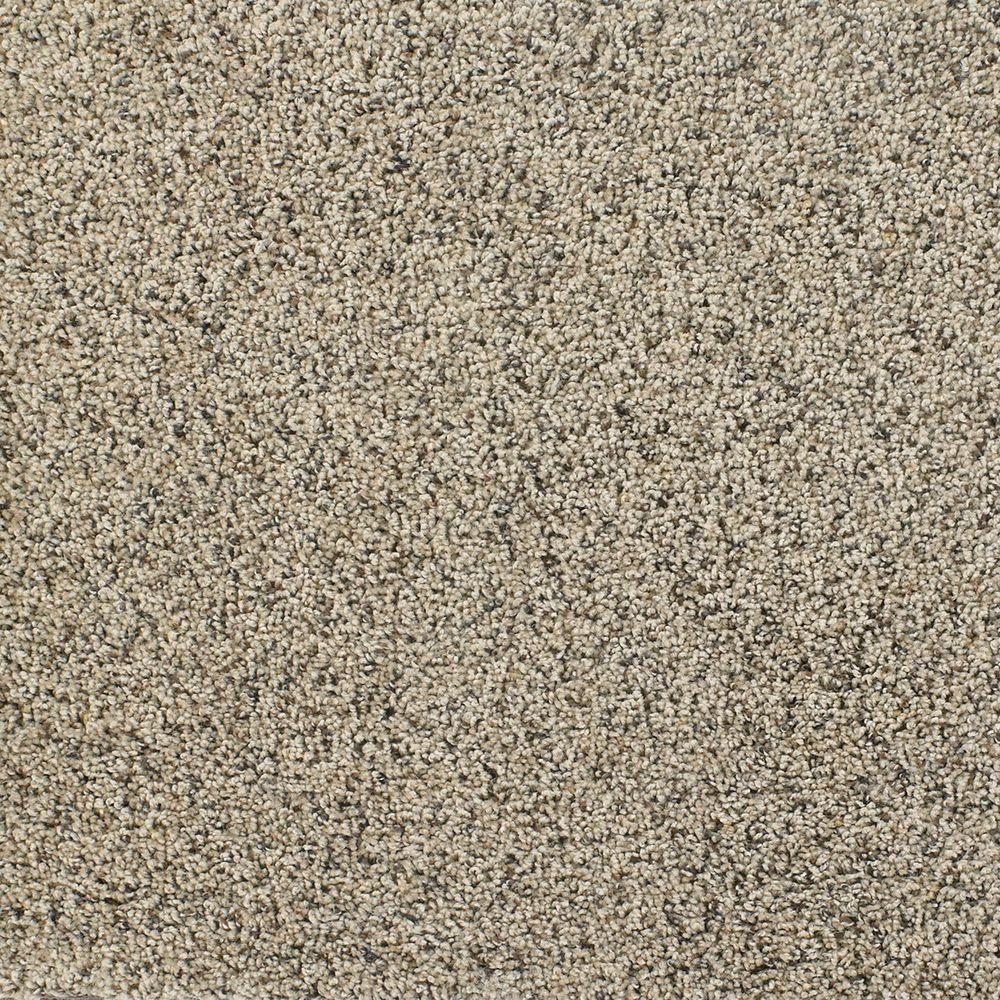 TrafficMASTER Team Player - Color Value Texture 12 ft. Carpet-H3860-705-1200-AB