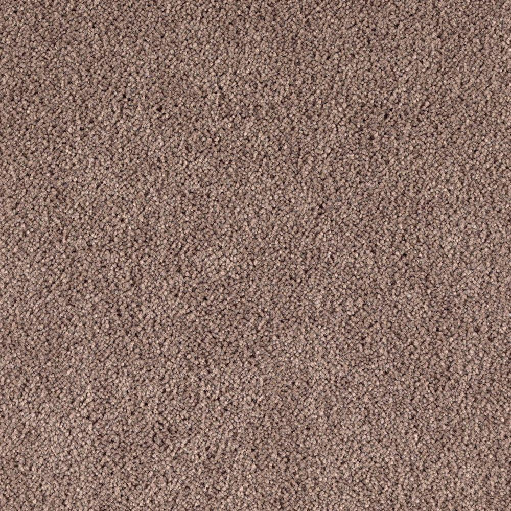 Home decorators collection san rafael i s color taupe for Taupe color carpet
