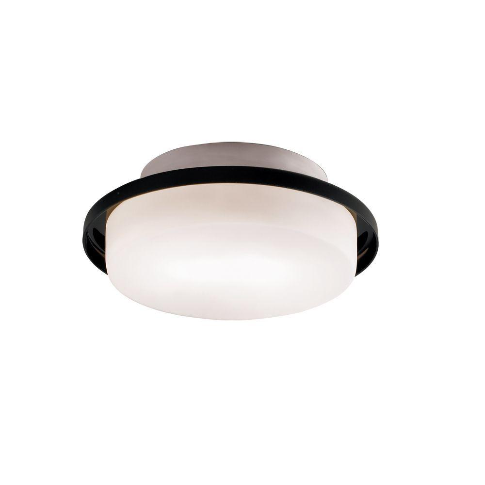 null Logen 1-Light Flush-Mount Black Wall/Ceiling Fixture-DISCONTINUED