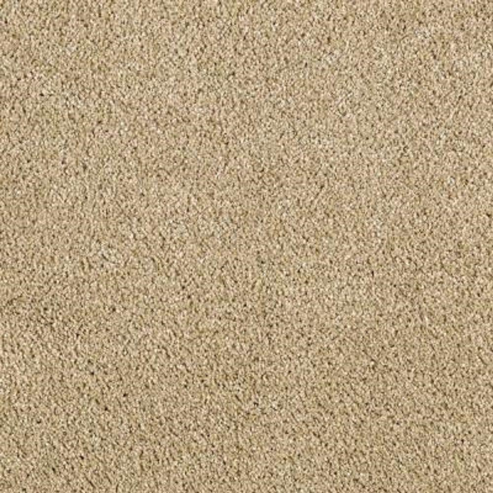 Carpet Sample - Pagliuca II - Color Shell Beige Texture 8