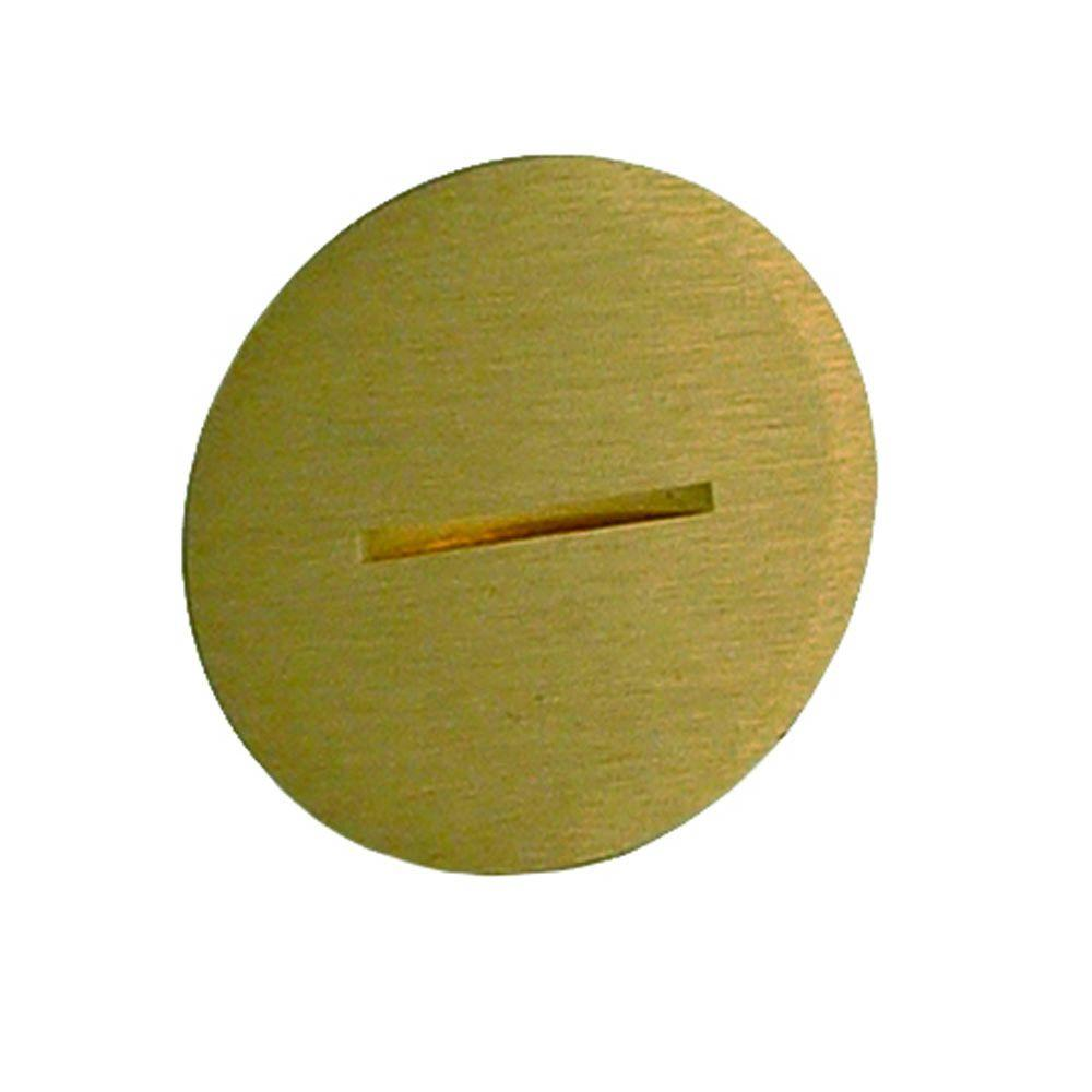 Replacement Brass Plug for 6500BR-5 Floor Box