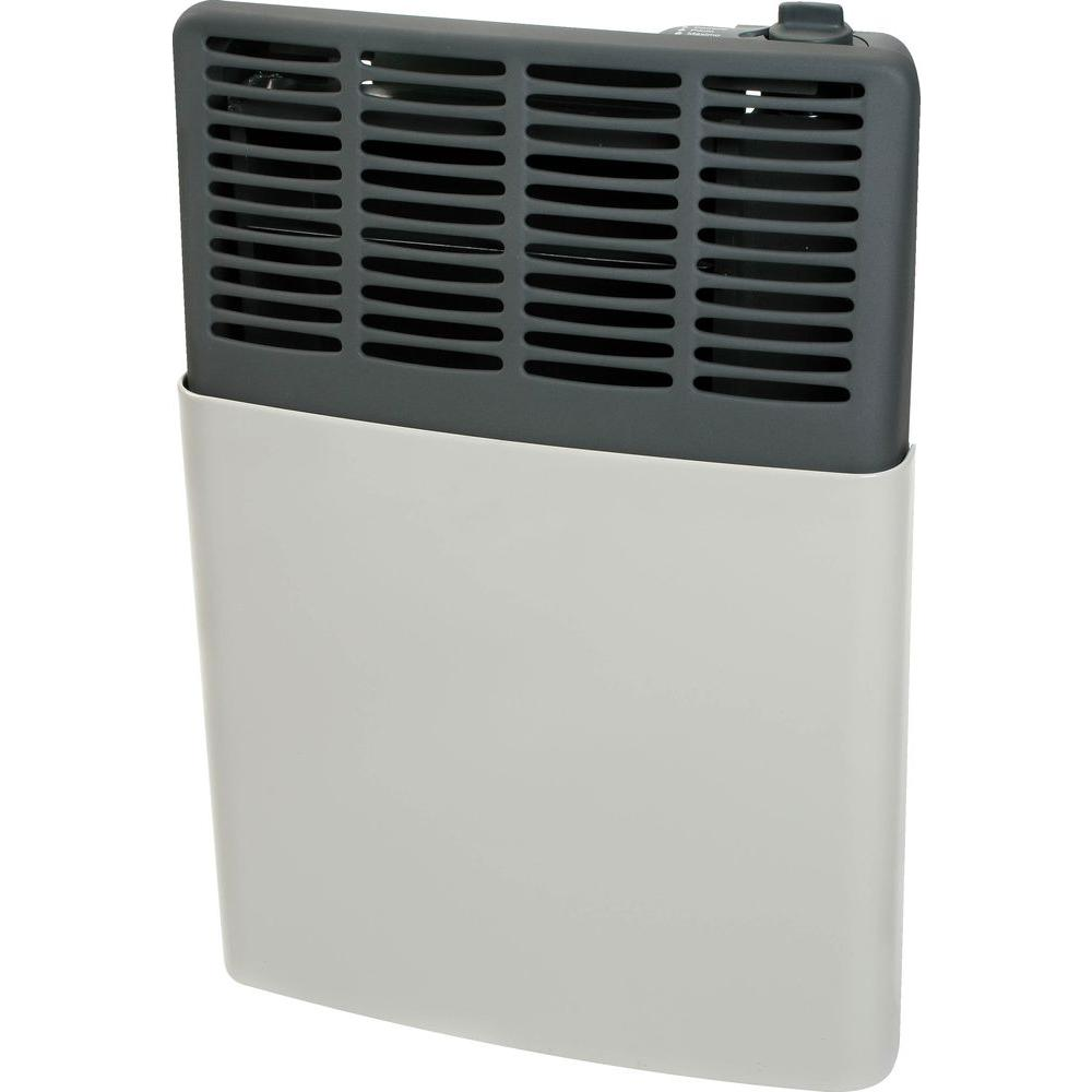 Ashley Hearth Products 8,000 BTU LP Gas Direct Vent Heater