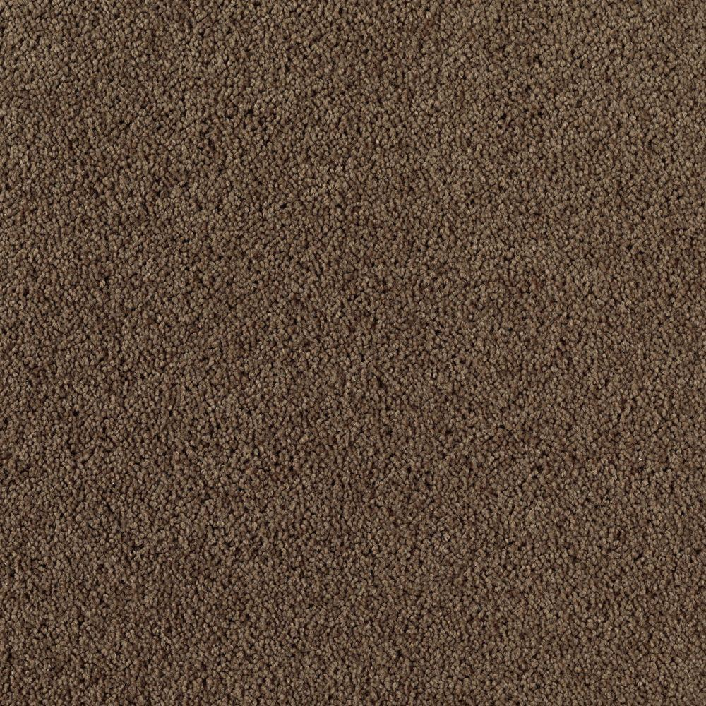 Trafficmaster Inglewood Color Coffee Bean 12 Ft Carpet