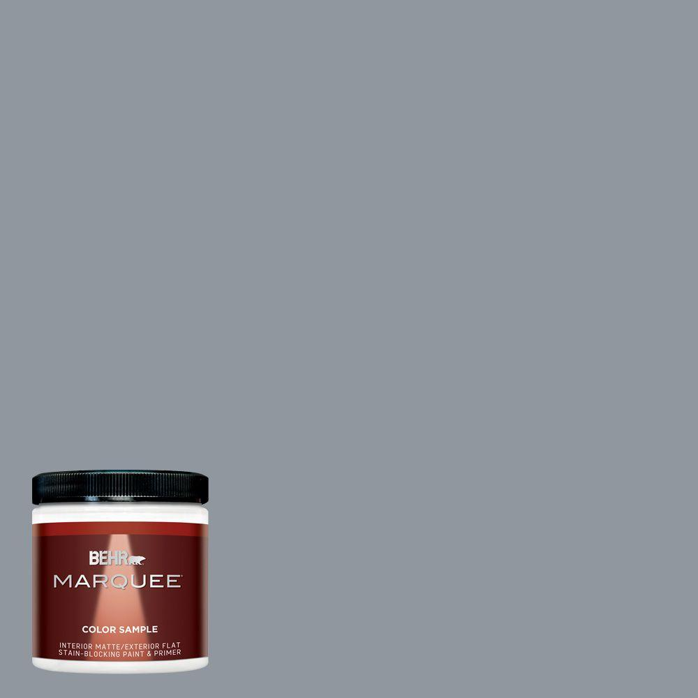 8 oz. #MQ5-21 Radiant Silver Interior/Exterior Paint Sample