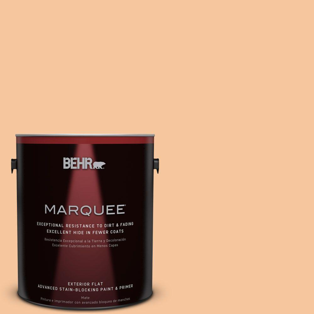 BEHR MARQUEE 1-gal. #M230-4 Cactus Blooms Flat Exterior Paint-445401 - The
