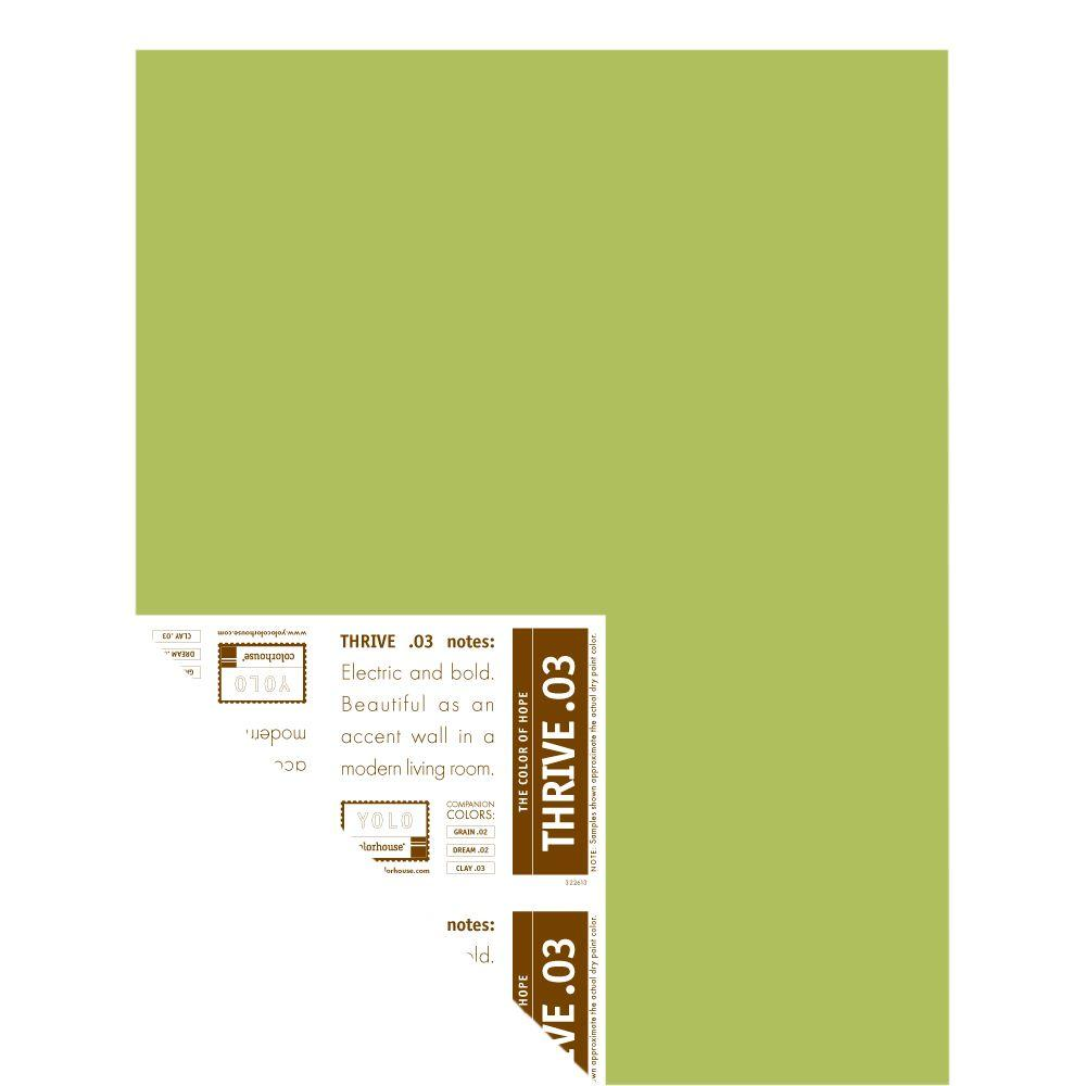 YOLO Colorhouse 12 in. x 16 in. Thrive .03 Pre-Painted Big Chip Sample