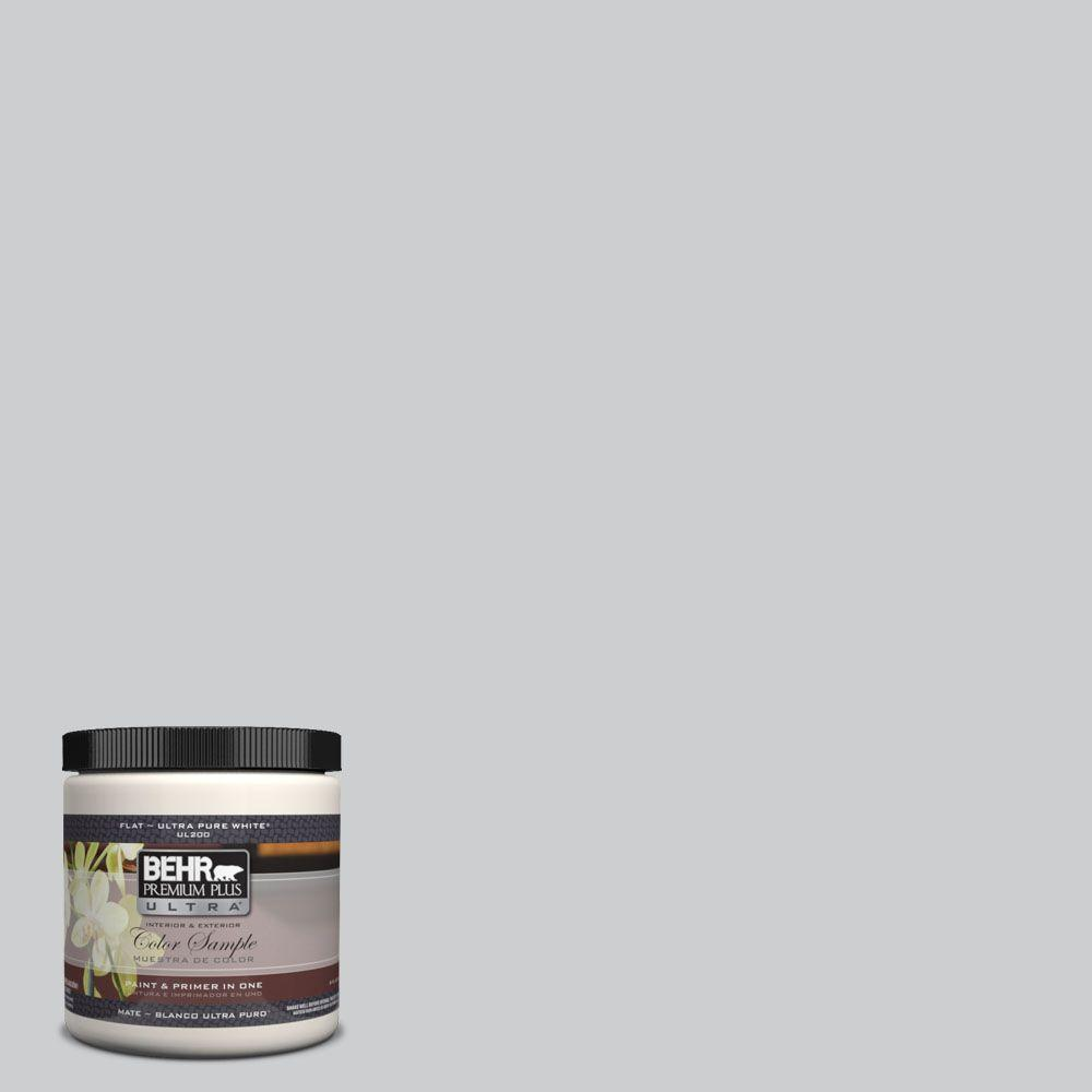 8 oz. #PPH-43 Gray Pearl Interior/Exterior Paint Sample
