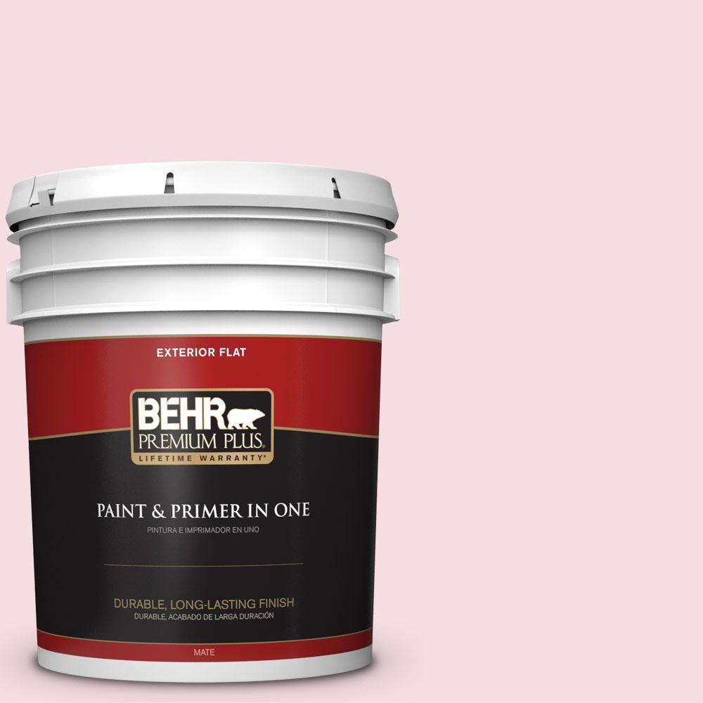 5-gal. #120A-2 Delicate Rose Flat Exterior Paint
