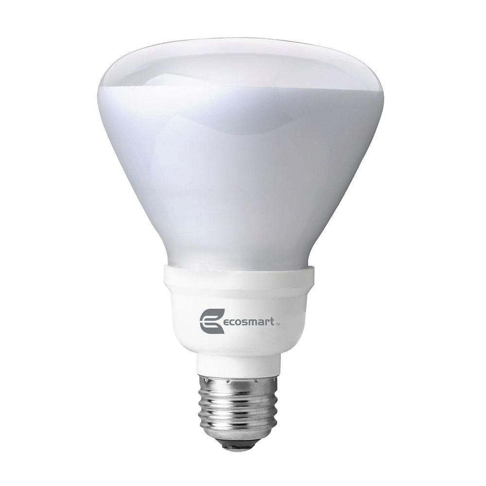 65W Equivalent Soft White (2700K) R30 Dimmable TruDim CFL Light Bulb