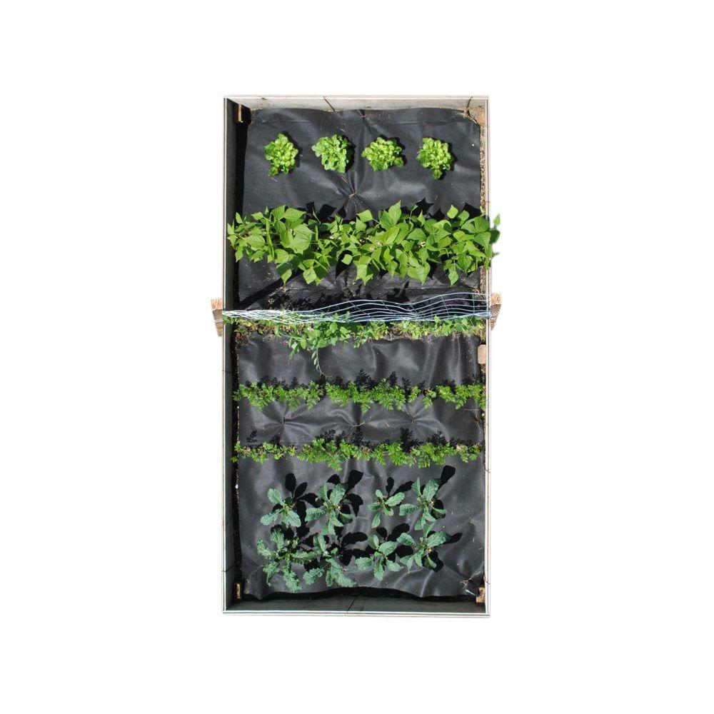48 in. x 96 in. Mixed Veggie Kit with Lettuce, Beans, Peas, Carrots and Kale