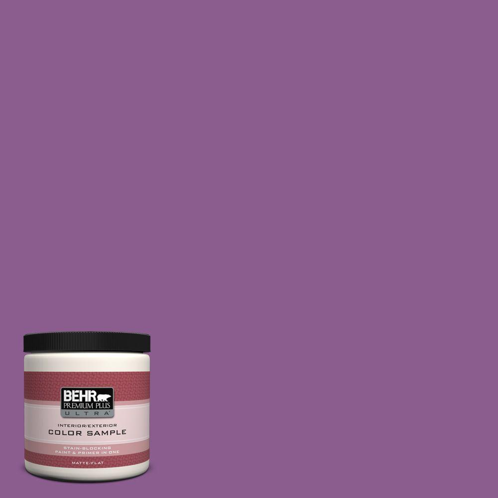 BEHR Premium Plus Ultra 8 oz. #P100-6 Chakra Interior/Exterior Paint Sample