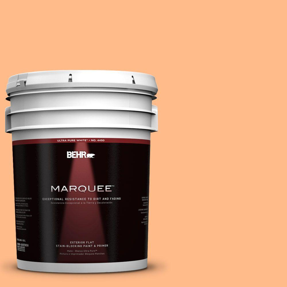 5-gal. #250B-4 Coral Gold Flat Exterior Paint