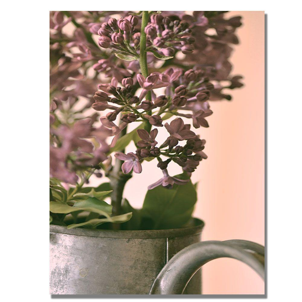 Trademark Fine Art 22 in. x 32 in. Lilac II Canvas Art-DISCONTINUED