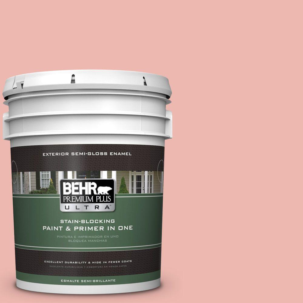 5-gal. #M170-3 Carnation Coral Semi-Gloss Enamel Exterior Paint