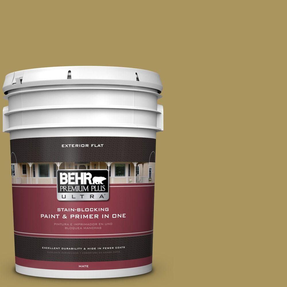 5-gal. #370F-6 Mossy Rock Flat Exterior Paint