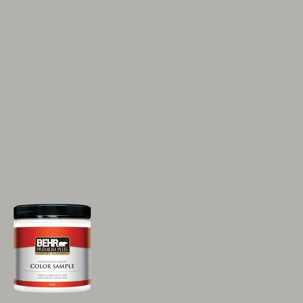 8 oz. #BXC-25 Colonnade Gray Interior/Exterior Paint Sample