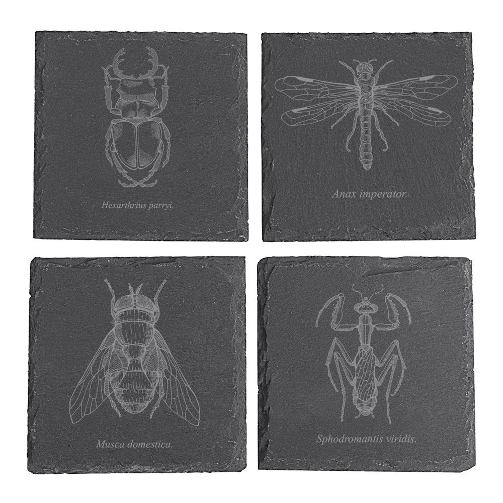 Halloween Insect Slate Coasters