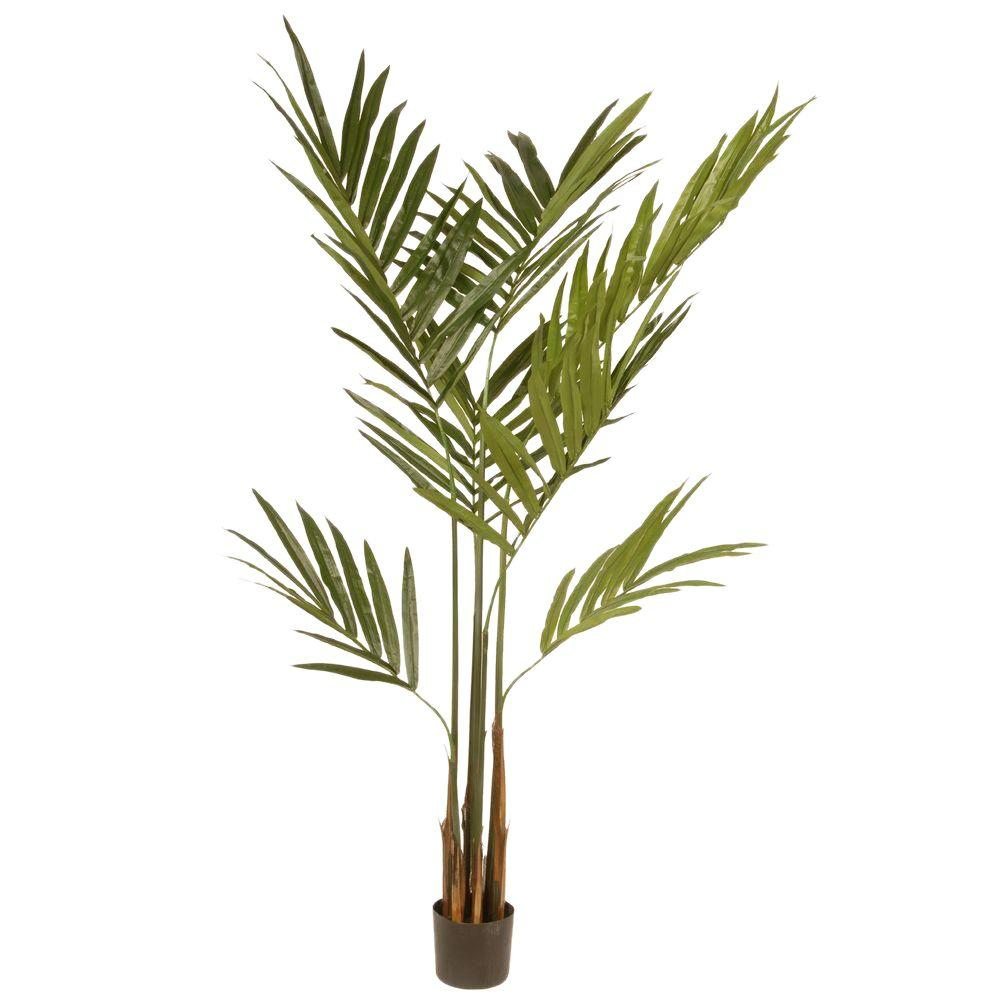 National Tree Company 5.8 ft. Kentia Palm Potted Tree-RAS-TH398P6 - The