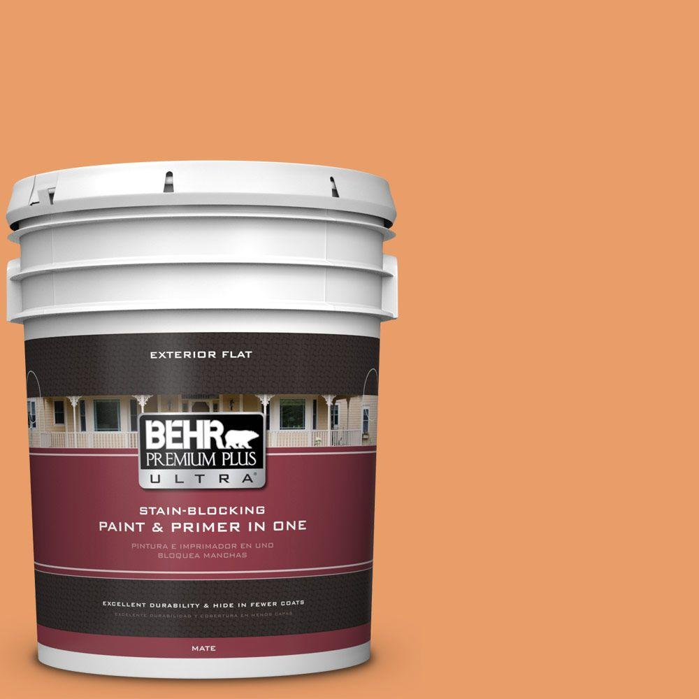 5-gal. #260D-4 Copper River Flat Exterior Paint