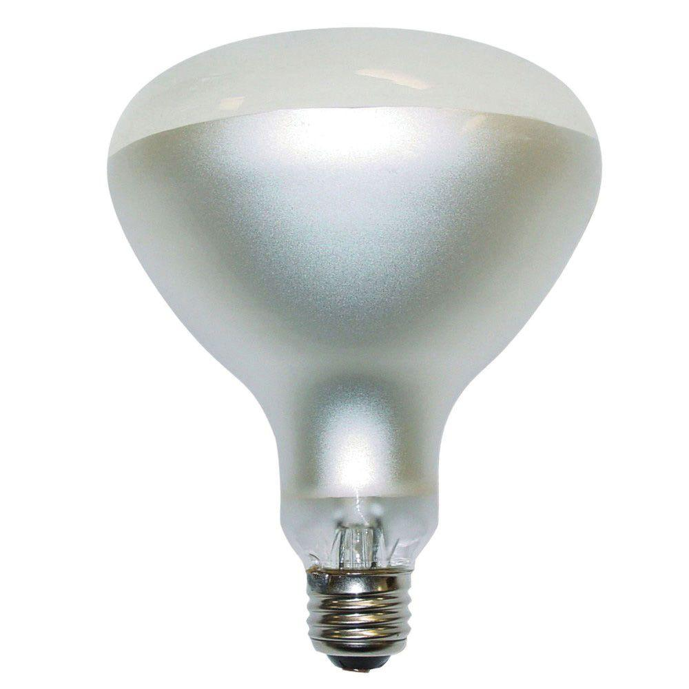 Philips 300-Watt Incandescent BR40 Swimming Pool Frosted Flood Light Bulb