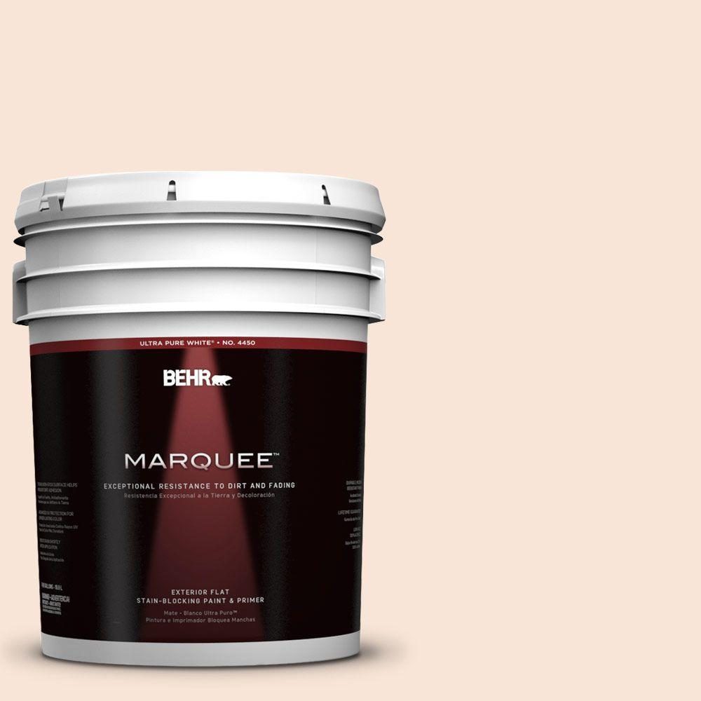 BEHR MARQUEE 5-gal. #230A-1 Shell Ginger Flat Exterior Paint