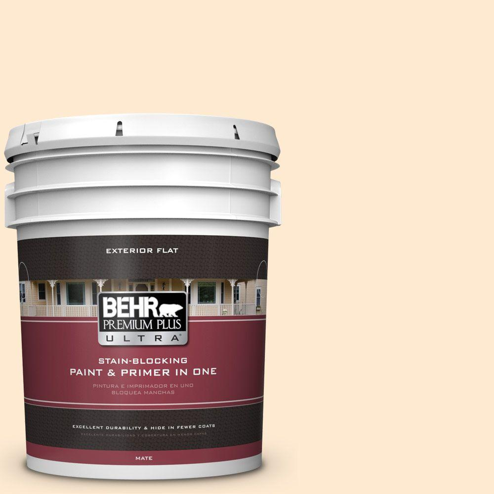 5-gal. #290A-2 Country Lane Flat Exterior Paint