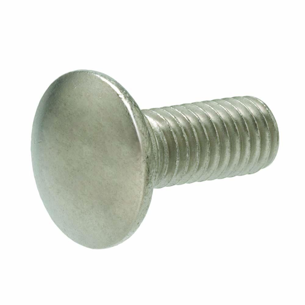 1/2- 13 in. x 8 in. Stainless Steel Carriage Bolt (10