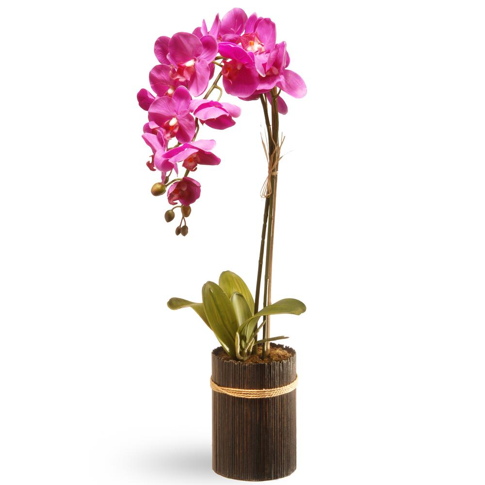 22.8 in. Purple Orchid
