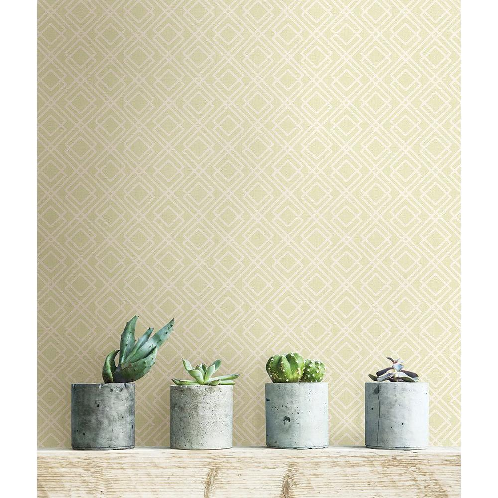 8 in. W x 10 in. H Milly Green Lattice Wallpaper Sample