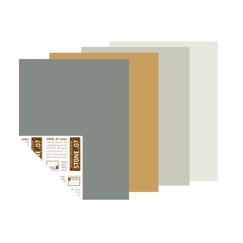 null 12 in. x 16 in. Metro Trend Palette Pre-Painted Big Chip Sample (4-Pack)-DISCONTINUED