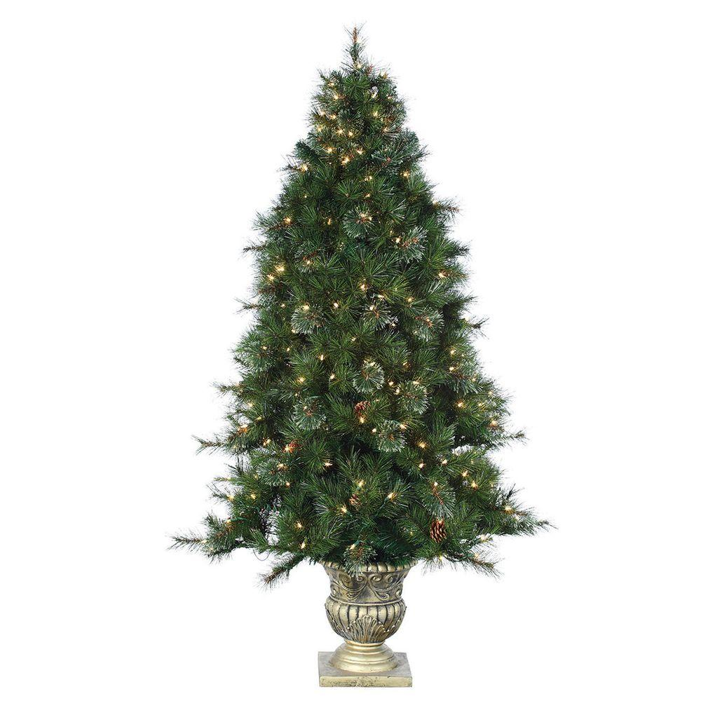 STERLING Holiday Ornaments & Decor 6 ft. Potted Pre-Lit Artificial Dover Pine Christmas Tree with Clear Lights Greens 5547-60C
