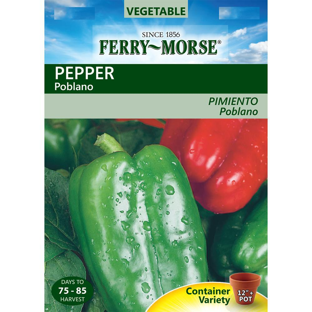 Ferry-Morse Poblano Pepper Seed-2052 - The Home Depot