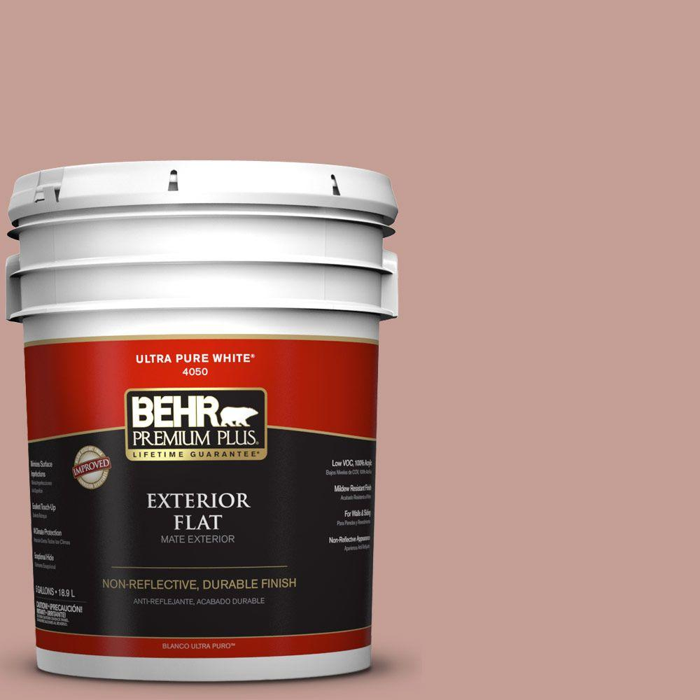 5-gal. #S170-4 Retro Pink Flat Exterior Paint