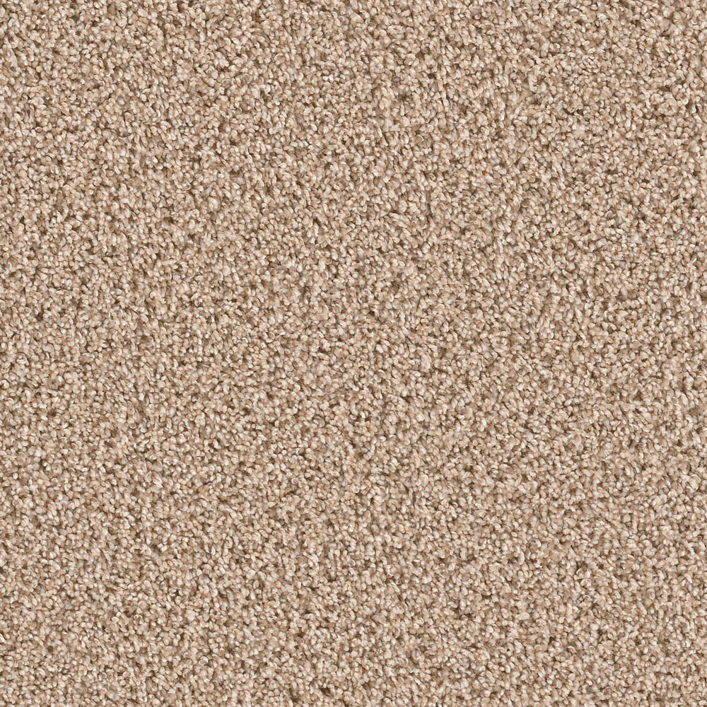 Deermont Rushmore Texture 18 in. x 18 in. Carpet Tile (10