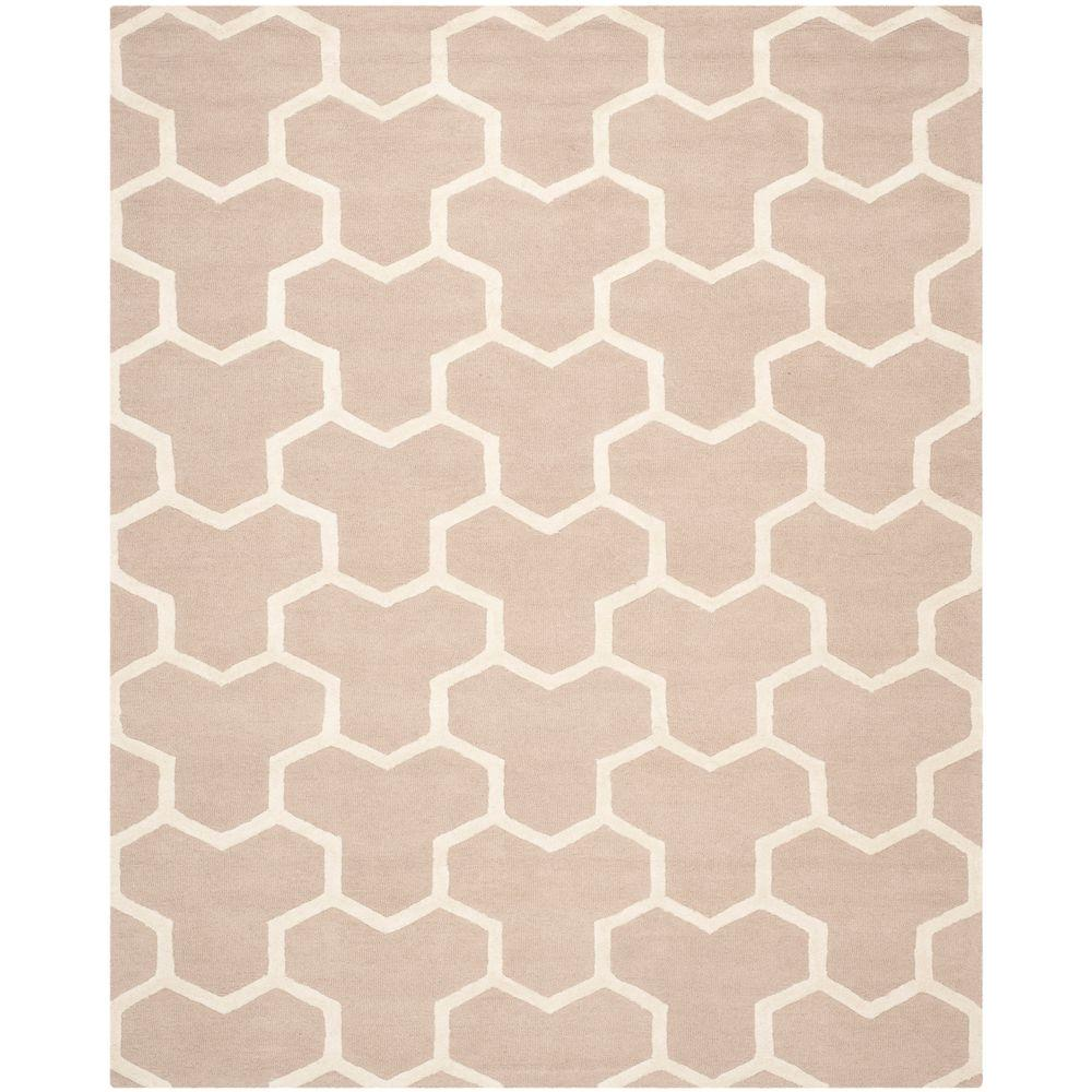 Safavieh Cambridge Beige/Ivory 6 ft. x 9 ft. Area Rug-CAM146J-6 -