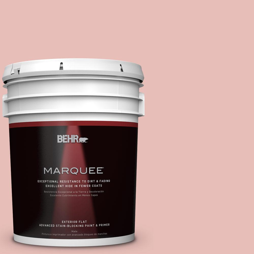 5 gal. #T18-01 Positively Pink Flat Exterior Paint