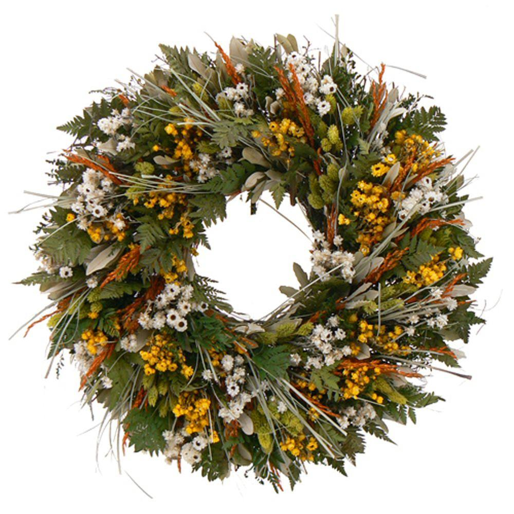 The Christmas Tree Company Wild Daisy Stroll 22 in. Dried Floral Wreath