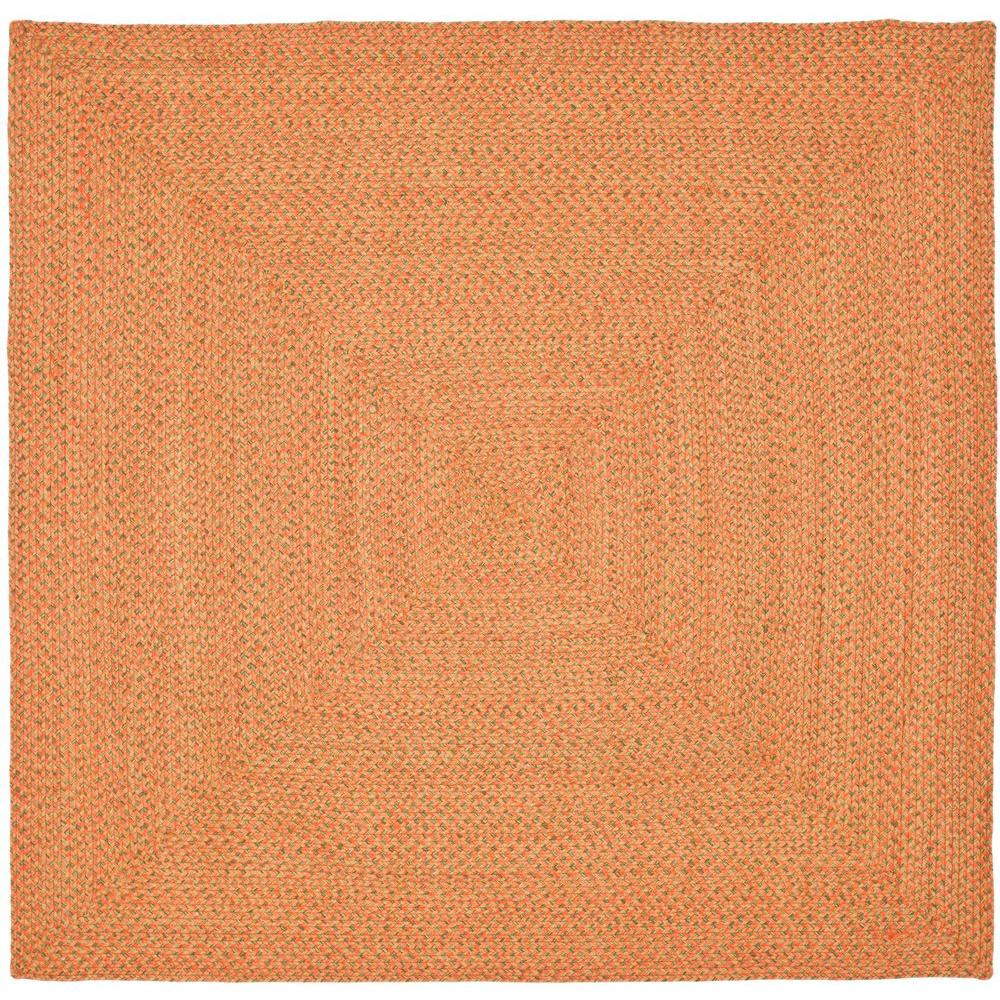 Safavieh Braided Multi 6 ft. x 6 ft. Square Area Rug-BRD166A-6SQ