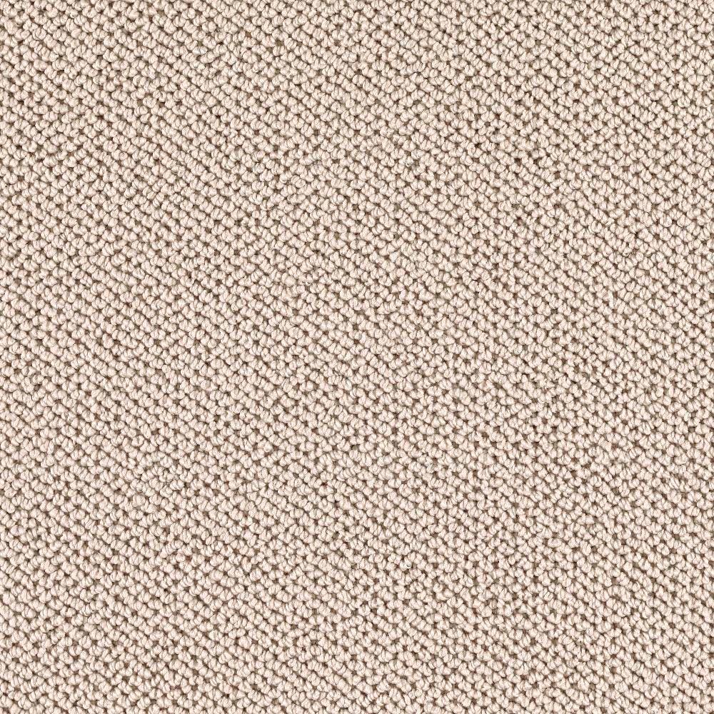 TrafficMASTER Priority - Color Natural Oat 12 ft. Carpet-0319D-22-12 - The