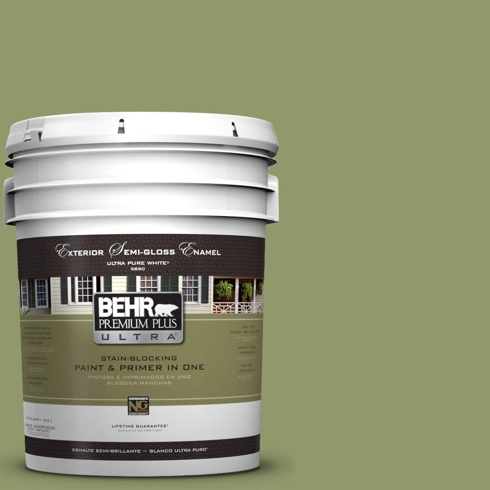 BEHR Premium Plus Ultra 5-gal. #HDC-SP14-2 Exotic Palm Semi-Gloss Enamel Exterior Paint
