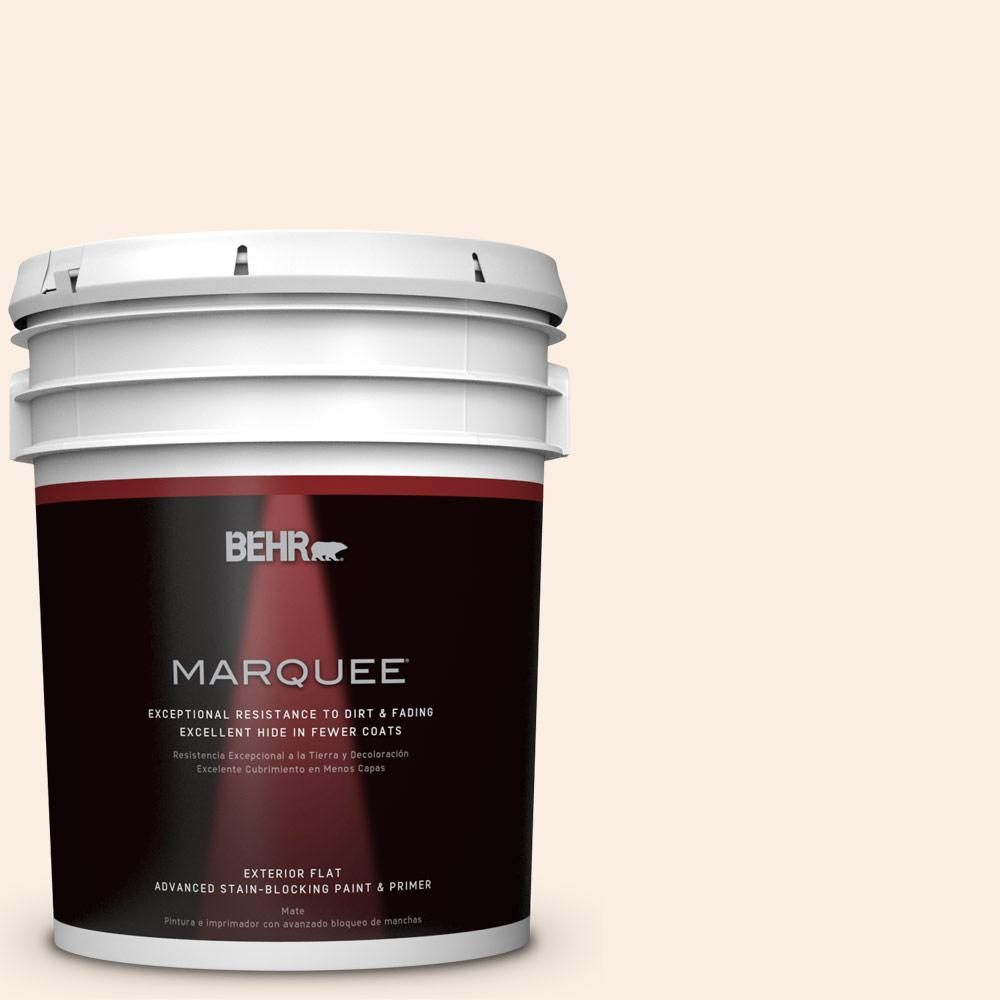 BEHR MARQUEE 5-gal. #PWN-24 Soft Gossamer Flat Exterior Paint-445005 - The