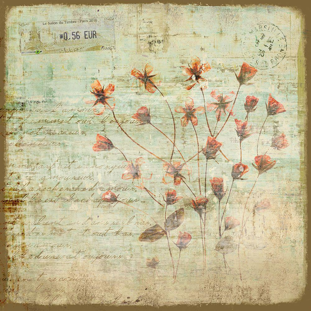"36 in. x 36 in. ""Flowers From Catalonia II"" by Unknown"
