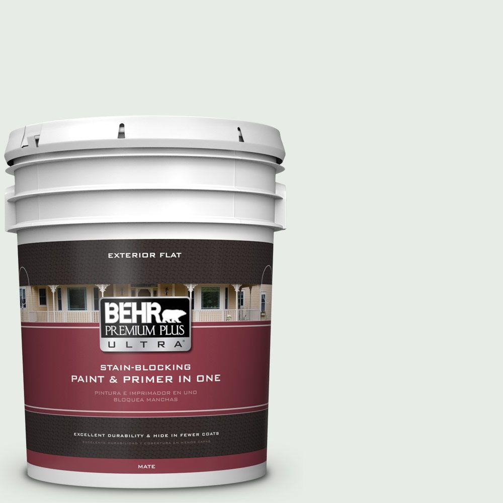 5-gal. #BWC-19 Queen Anne's Lace Flat Exterior Paint