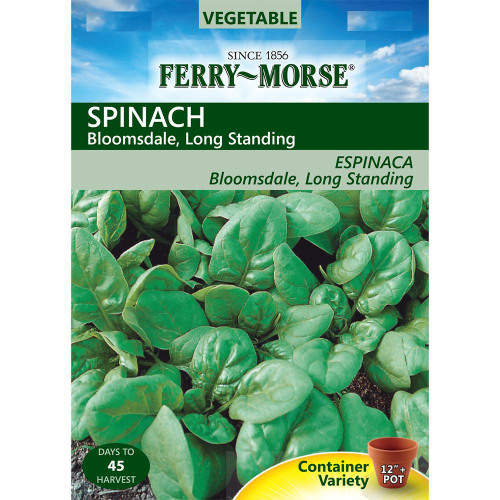 Ferry-Morse Spinach Bloomsdale Long-Standing Seed
