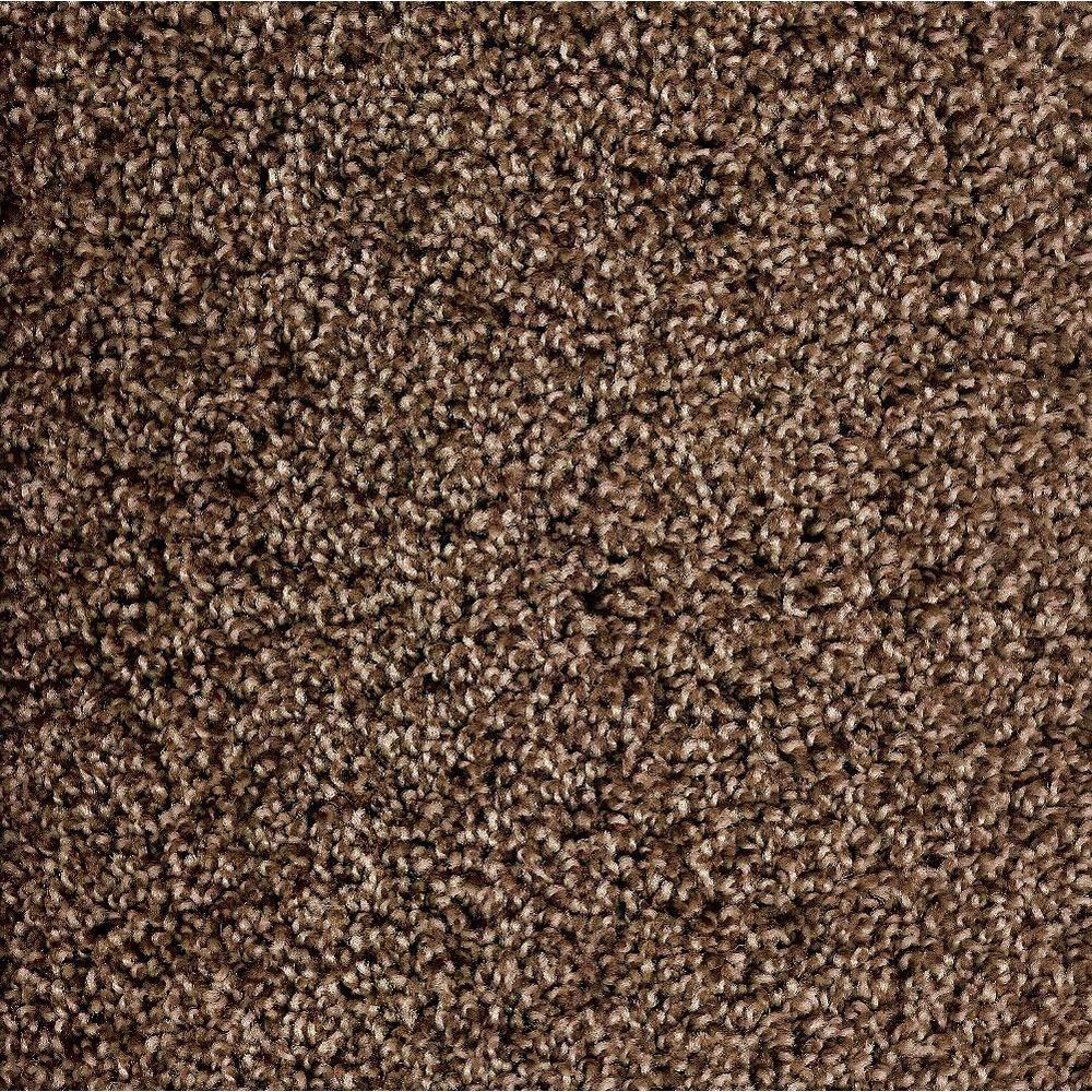 Simply Seamless Serenity Espresso Texture 24 in. x 24 in. Residential Carpet Tile (10 Tiles/Case)